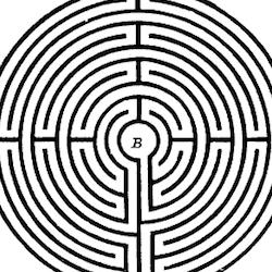 npt-maze